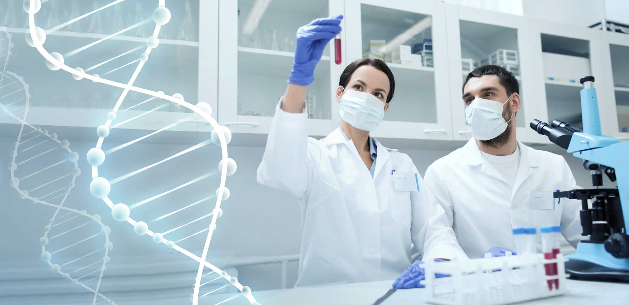 dna testing fully confidential and legal dna testing service